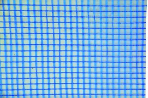 BBG Gitterplane 4x8m 220g/m2 mit Ösenrand Transparentblau