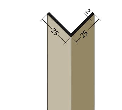 PROTEKTORWERK Winkelprofil 3520 25x25 mm 2,5 m Weiß