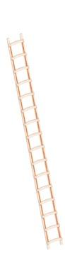 Layher Steigtechnik Dachleiter 1046 16 Sprossen Länge 4,50 m Holz