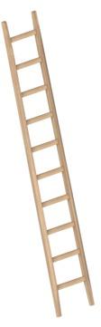 Layher Steigtechnik Anlegeleiter 1036 10 Sprossen Holz