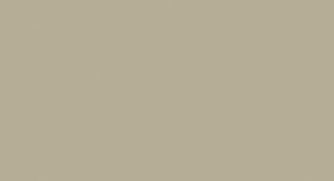 Eternit Cedral Click glatt C03 3600x186x12 mm Braun