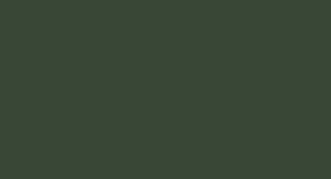 Eternit Cedral Click glatt C31 3600x186x12 mm Grün