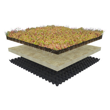 Knauf Insulation Gründach System Green Roof Standard High Urbanscape Höhe ca. 65-85 mm