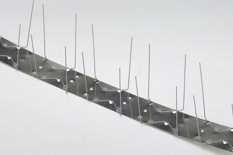 Frank Bauelemente Taubenabwehr 2-reihig 100 cm Edelstahl V2A