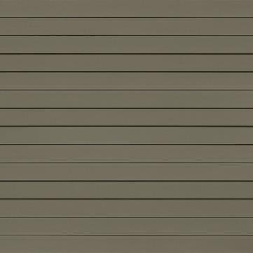 Eternit Cedral Lap glatt 10 mm C58 3600x190 mm Grün