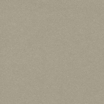 Eternit Natura Pro 3100x1250x8 mm Liefermaß 3130x1280 mm mit Stanzkante Equitone Beige/NU892